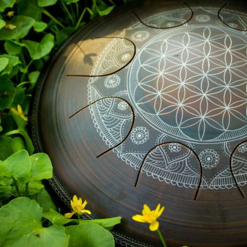 Gubarev drum Freezbee Flower of life